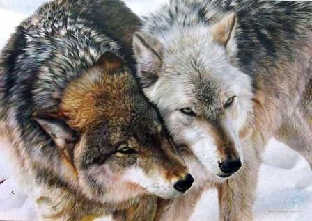 İkiz yaratılmış hayvanlar 8