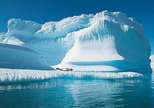 Kutuplardan Sanatlı Manzaralar 11