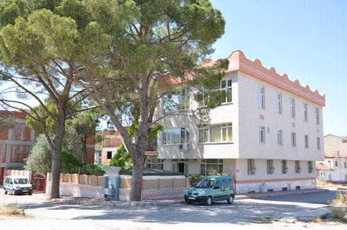Binayı delip geçen ağaç 2
