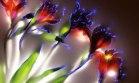 Bitkilerin elektroşoklu halleri