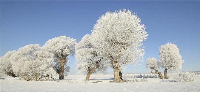 Kastamonu'da soğuk hava 1