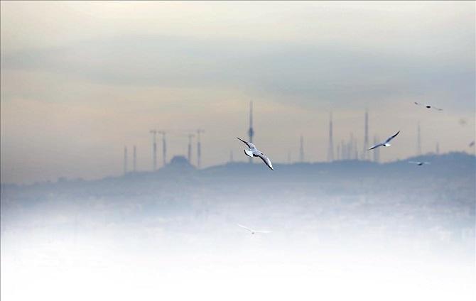 İstanbul Boğazı'nda sis 1