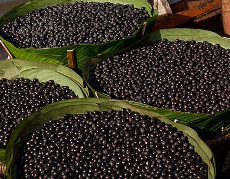 Bağışıklığı güçlendiren 10 meyve 2