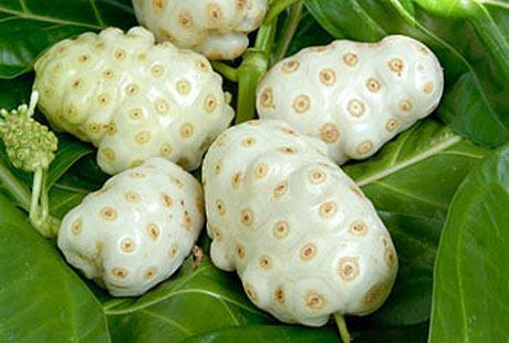 Bağışıklığı güçlendiren 10 meyve 9
