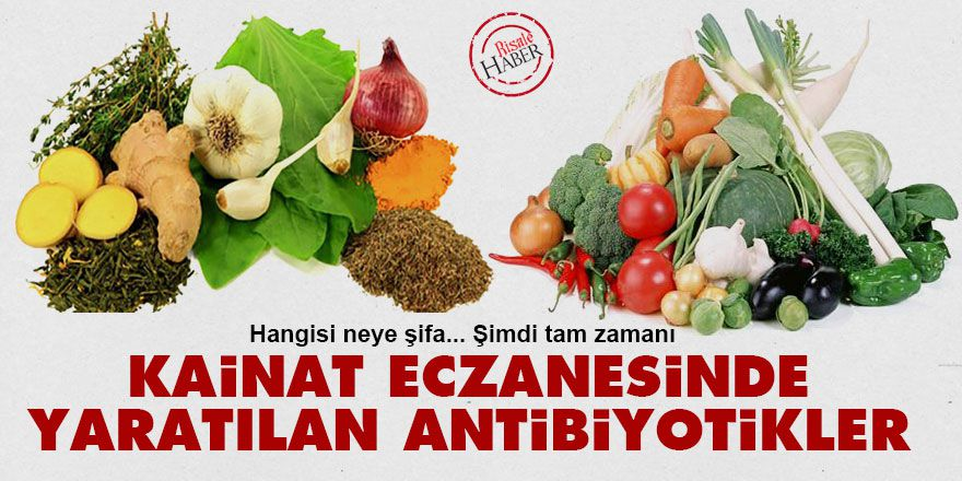 Kainat eczanesinde yaratılan antibiyotikler
