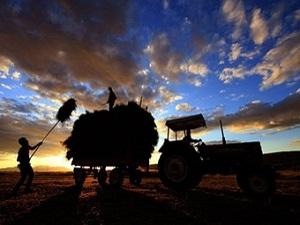 Bakanlık'tan çiftçilere iyi haber