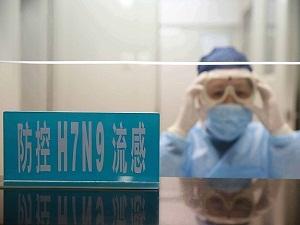 Çin'de kuş gribine karşı korunma tedbirleri
