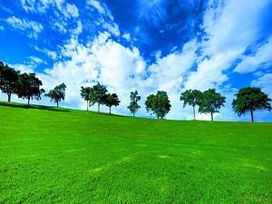 2025'te bir hektar tarım arazisi 5 kişiyi beslemek zorunda kalacak
