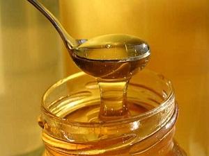 Muğla'da organik bal üreticileri sertifikalanıyor