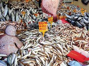 Balık fiyatları 10 TL'ye yükseldi