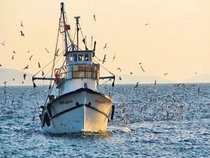 Su ürünleri avcılığı düzenlemesi değişti