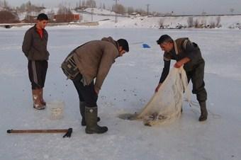 Ekmeklerini, buzun altından çıkarıyorlar