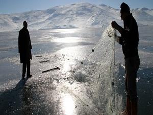 Jeneratörle balık avlamışlar!