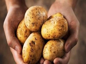 Soğuk hava ile birlikte zirve yapan patates, muzu solladı