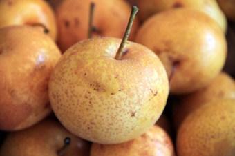 Meyve üreticisinin yeni gözdesi Asya armudu olacak