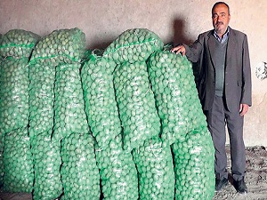 Patates, depoda 5 TL olmayı bekliyor