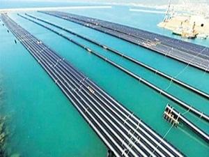 Kıbrıs'ın can suyu Alaköprü Barajı sona yaklaştı