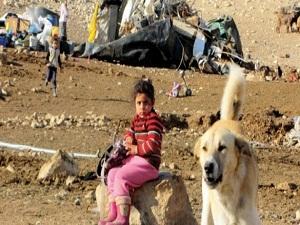 Ürdün Vadisi'nde işgalci yıkımı