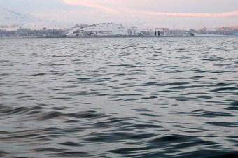 Vangölü kirlilikte tehlike sinyalleri vermeye başladı