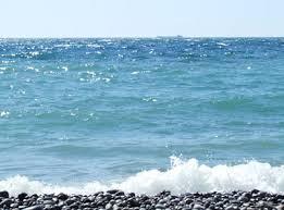 Karadeniz'de kirlilik oranı azaldı