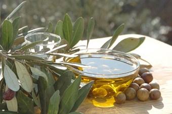 Zeytin ve zeytinyağı 5 ülkede tanıtılacak