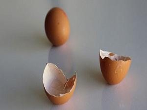 Yumurta kabuğundan gelen şifa