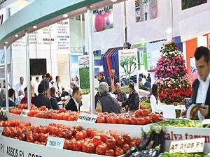 İsrail'e 3 günde bir 1550 ton sebze-meyve
