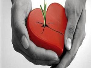 Organ bağışını alacak merkez yok