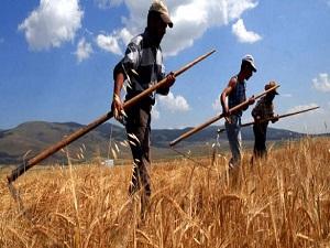 Çiftçiye verilecek destekler belirlendi