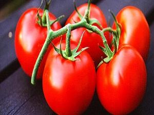 Sebze ihracatını domates sırtladı