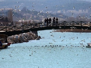 Beyşehir Gölü hayalet ağlardan temizleniyor