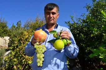 Keben köyünde dört mevsim meyve hasat ediliyor