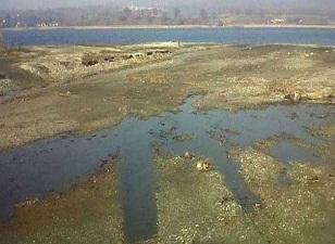 Sapanca Gölü için dernek kuruldu