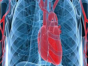 Kalp pili tedavisinde yeni dönem