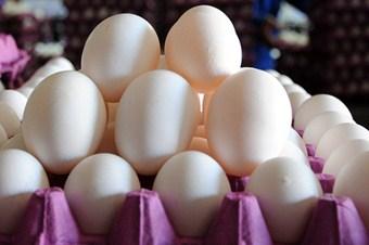 Bir hile de 'köy yumurtası'nda