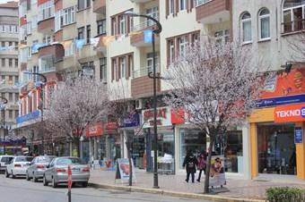 Bafra'da ağaçlar beyaza büründü