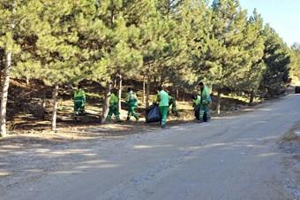 Mamak Belediyesi'nden orman temizliği