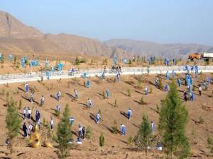 Türkmenistan'da çöller yeşeriyor
