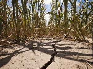 İklimsel kıtlık