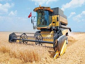 Kuraklık 27 ilde buğday rekoltesini etkileyecek