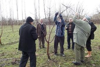 Aksaray'da çiftçi eğitimleri devam ediyor