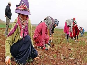 Suriyeli kadınlar 'günlerinden' habersiz
