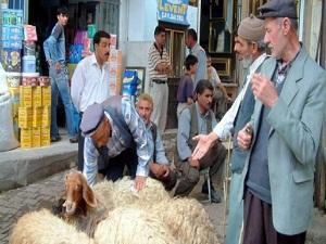 Köylü Satış Pazarı Kurulması İsteniyor
