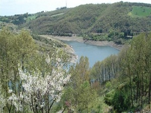 İstanbul'a su sağlayan barajdan sevindirici haber