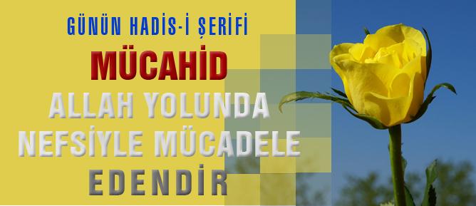 Mücahid Allah yolunda nefsiyle mücadele edendir