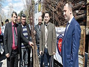 Makedonyalı çiftçilere meyve fidanı