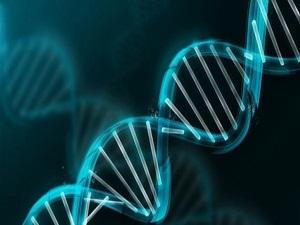 Kanser genlerde yakalanabilir mi?