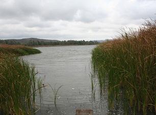 Bir zamanlar suyu içilen göl şimdi bataklığa dönüştü
