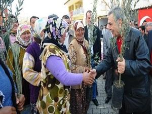 İzmir'in kırsalı meyve bahçeleriyle dolacak
