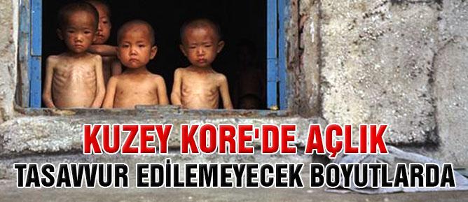 Kuzey Kore'de açlık tasavvur edilemeyecek boyutlarda